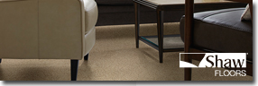 Shaw® Carpet